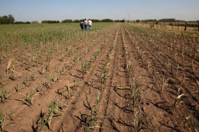 Mesa agropecuaria bonaerense rechazó aspectos técnicos de declaración de Emergencia por sequía