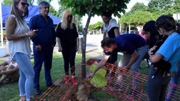 Se llevó a cabo la jornada solidaria por los animales comunitarios