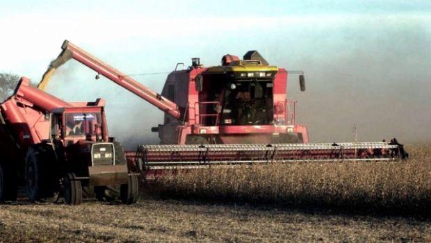 El Gobierno proyecta una cosecha récord de granos