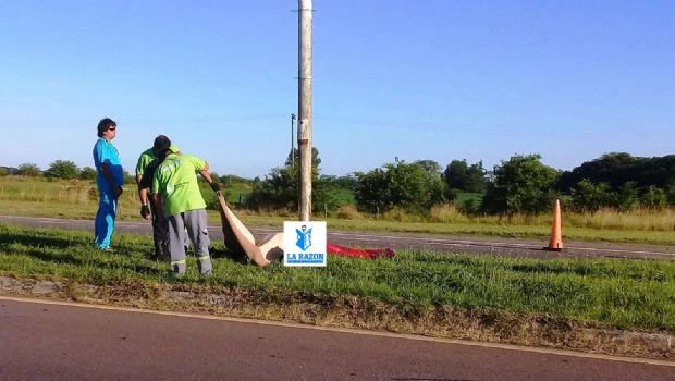 Fatal accidente en la Ruta 5, murió un motociclista