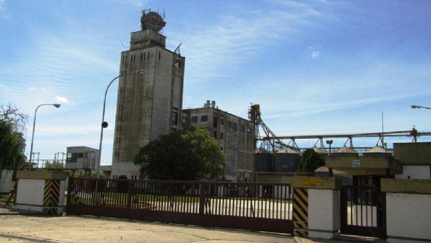 Se radica en el Parque Industrial  la empresa harinera Pronexo SRL