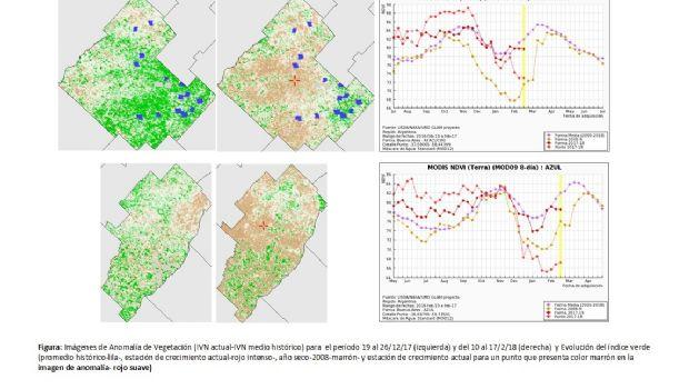 Un informe del INTA advirtió sobre la difícil situación del ganado por la sequía