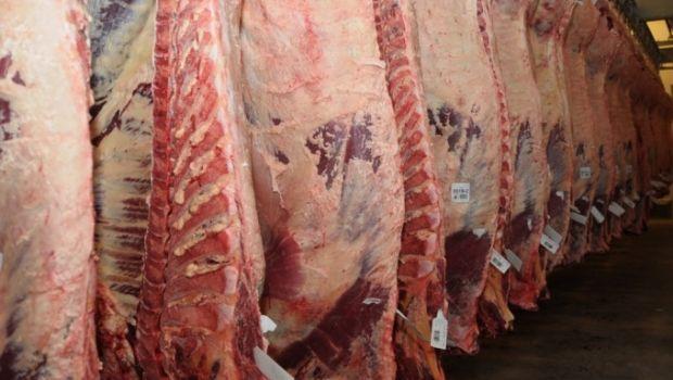 Las exportaciones de carne bovina crecieron 60%