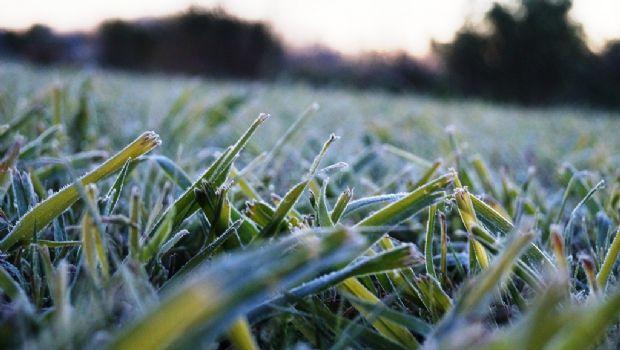 Ayer fue la mañana más fría del año