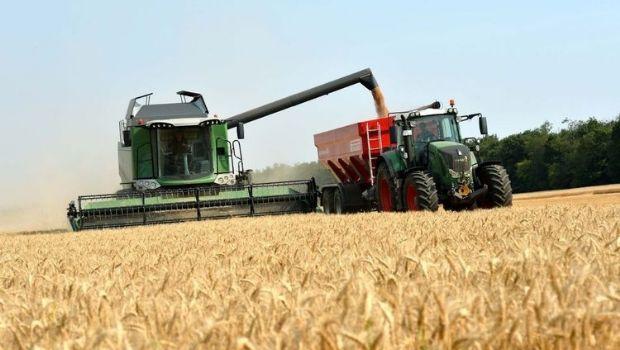 La producción de granos crecería un 22% y generaría ingresos por 23.200 millones de dólares