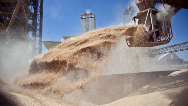 Vuelven a publicarse las existencias de granos
