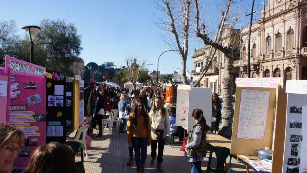 Proyectos de la Escuela Técnica y la EP N° 8, a la etapa provincial de la Feria de Ciencias